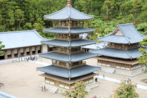 奈良県の法隆寺(?)